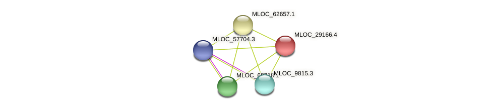 MLOC_29166.4 protein (Hordeum vulgare) - STRING interaction network
