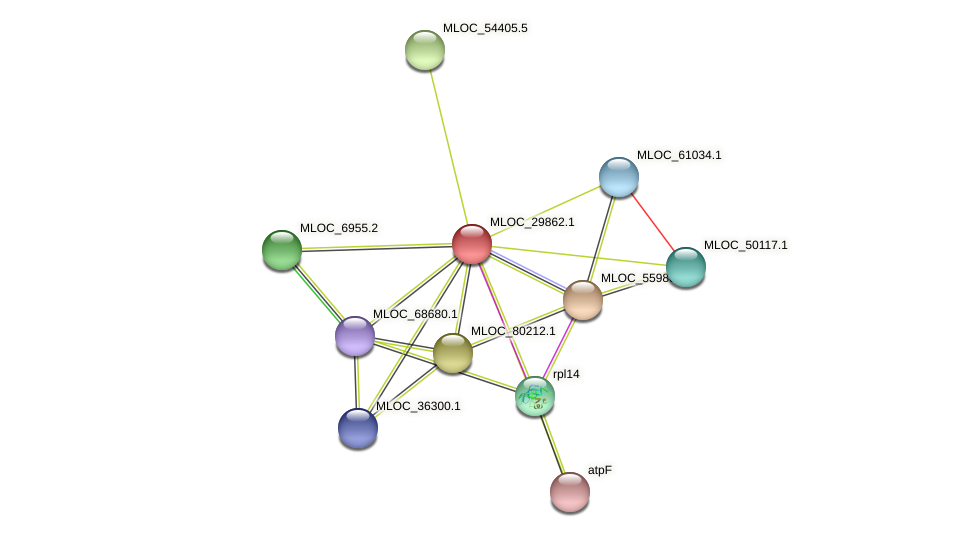 MLOC_29862.1 protein (Hordeum vulgare) - STRING interaction network