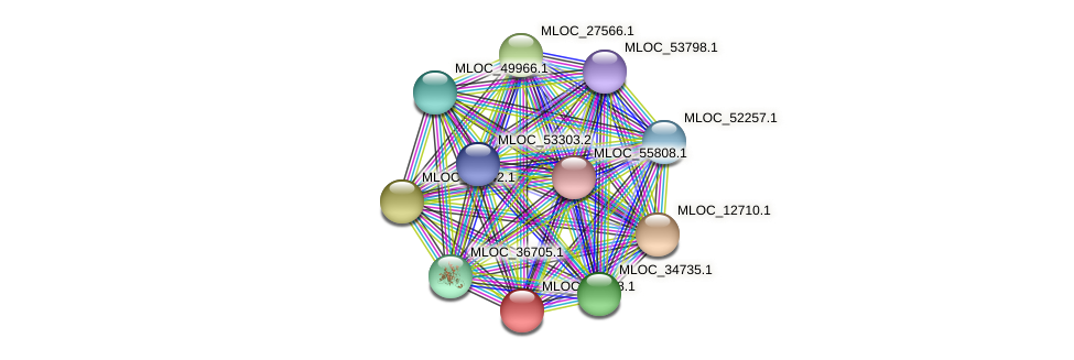 MLOC_30248.1 protein (Hordeum vulgare) - STRING interaction network