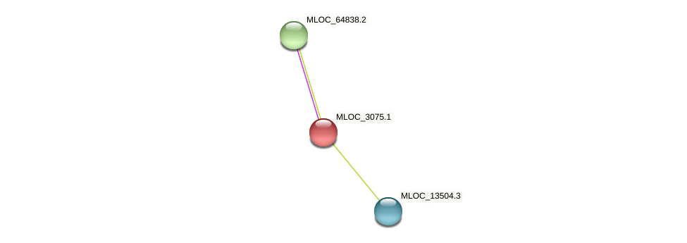 MLOC_3075.1 protein (Hordeum vulgare) - STRING interaction network
