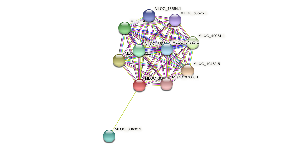 MLOC_3091.1 protein (Hordeum vulgare) - STRING interaction network