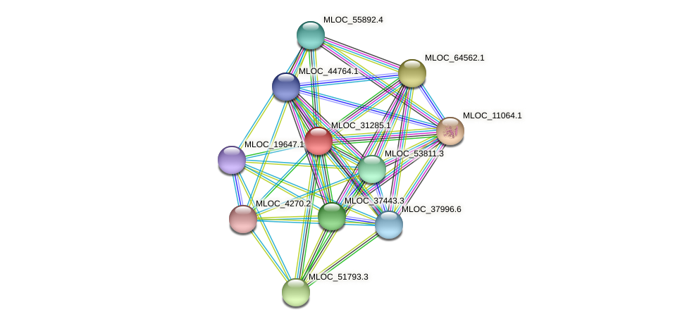 MLOC_31285.1 protein (Hordeum vulgare) - STRING interaction network