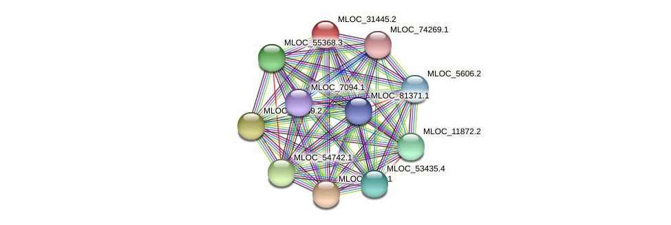 MLOC_31445.2 protein (Hordeum vulgare) - STRING interaction network