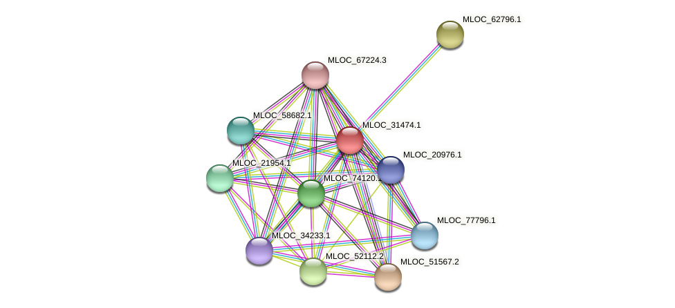 MLOC_31474.1 protein (Hordeum vulgare) - STRING interaction network