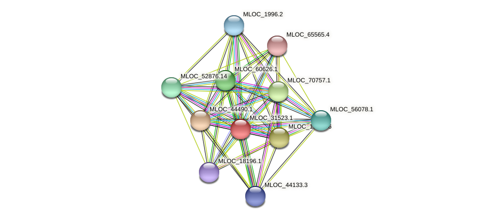 MLOC_31523.1 protein (Hordeum vulgare) - STRING interaction network