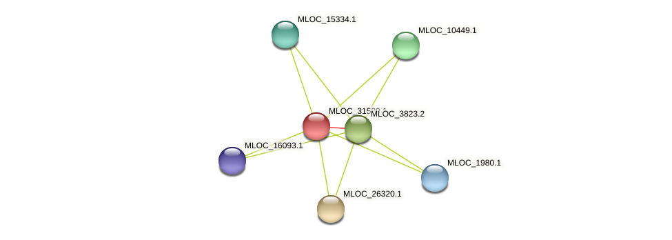 MLOC_31529.1 protein (Hordeum vulgare) - STRING interaction network