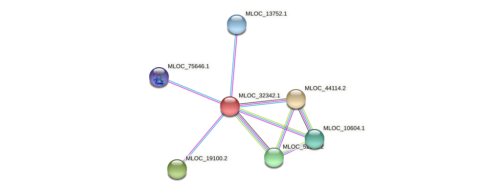 MLOC_32342.1 protein (Hordeum vulgare) - STRING interaction network