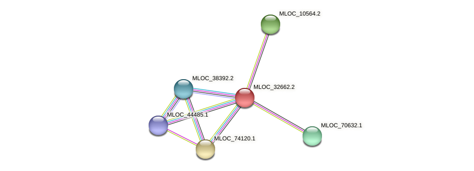 MLOC_32662.1 protein (Hordeum vulgare) - STRING interaction network
