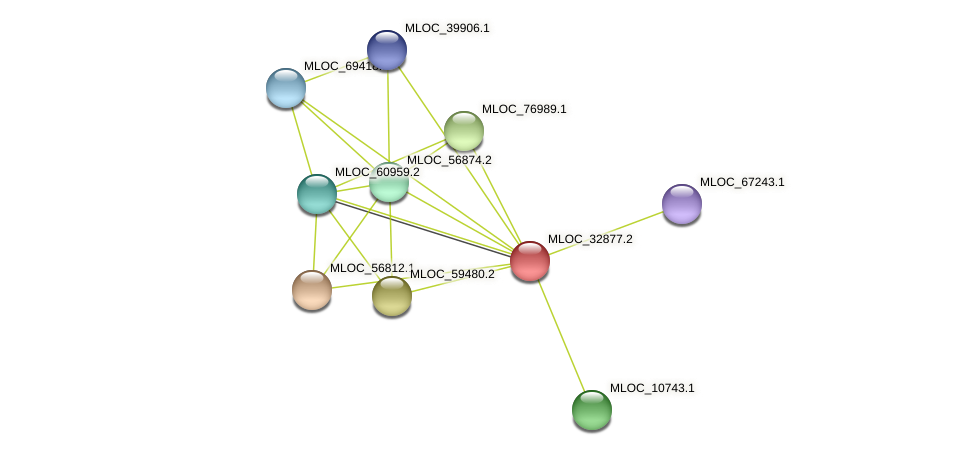 MLOC_32877.2 protein (Hordeum vulgare) - STRING interaction network