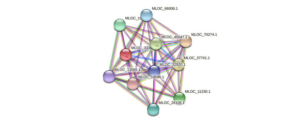 MLOC_33306.1 protein (Hordeum vulgare) - STRING interaction network