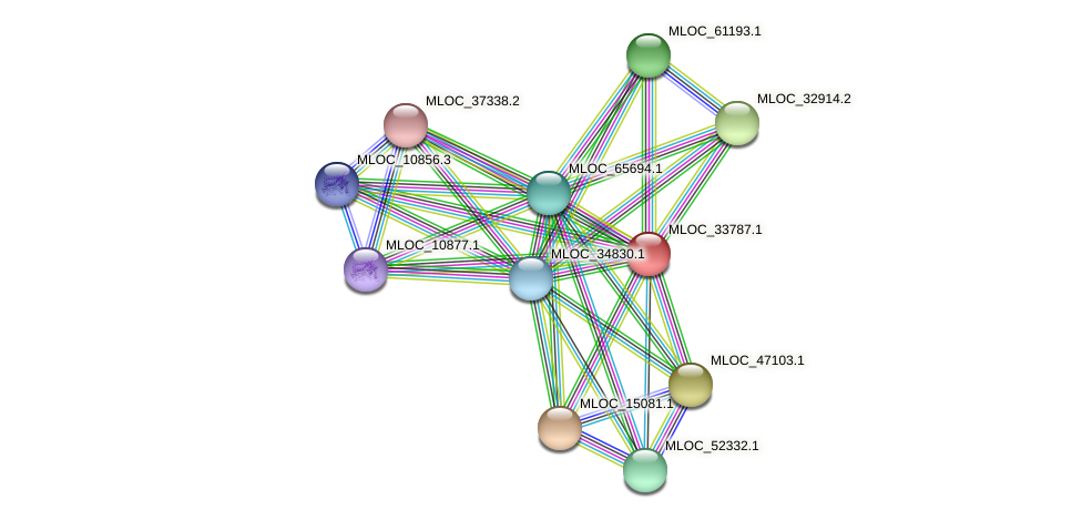 MLOC_33787.1 protein (Hordeum vulgare) - STRING interaction network