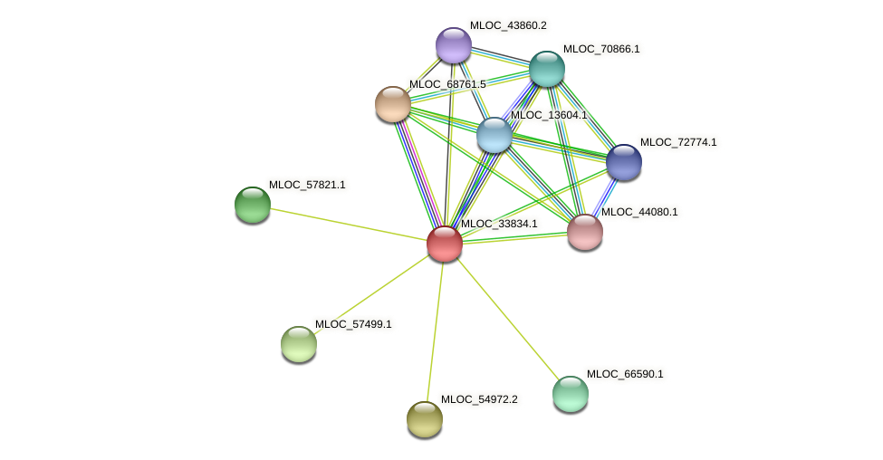 MLOC_33834.1 protein (Hordeum vulgare) - STRING interaction network