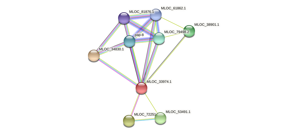 MLOC_33974.1 protein (Hordeum vulgare) - STRING interaction network