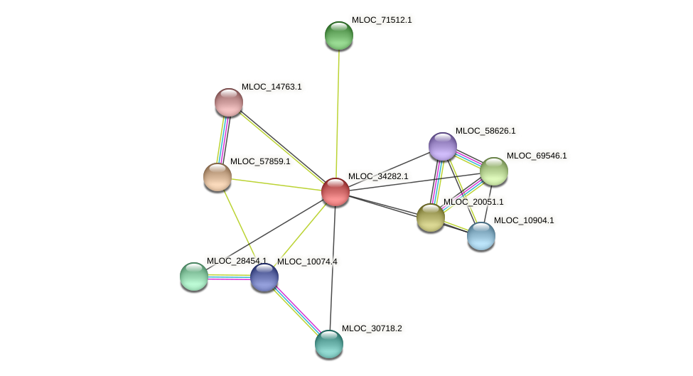 MLOC_34282.1 protein (Hordeum vulgare) - STRING interaction network
