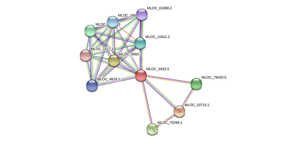 MLOC_3433.3 protein (Hordeum vulgare) - STRING interaction network