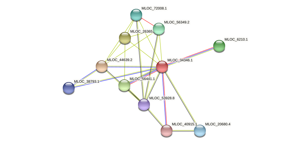 MLOC_34346.1 protein (Hordeum vulgare) - STRING interaction network