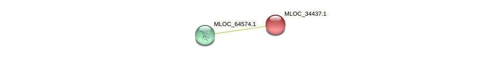 MLOC_34437.1 protein (Hordeum vulgare) - STRING interaction network