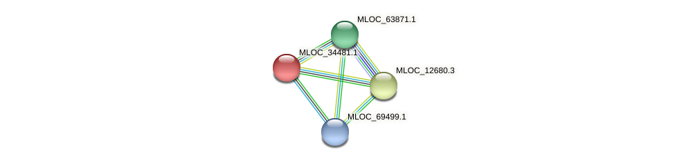 MLOC_34481.1 protein (Hordeum vulgare) - STRING interaction network