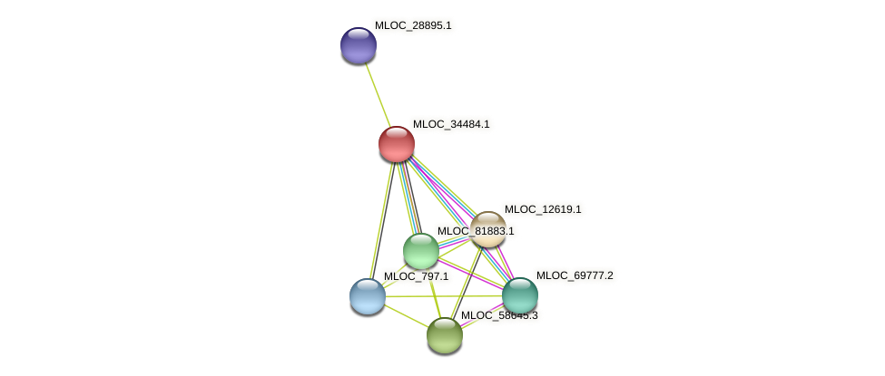 MLOC_34484.1 protein (Hordeum vulgare) - STRING interaction network