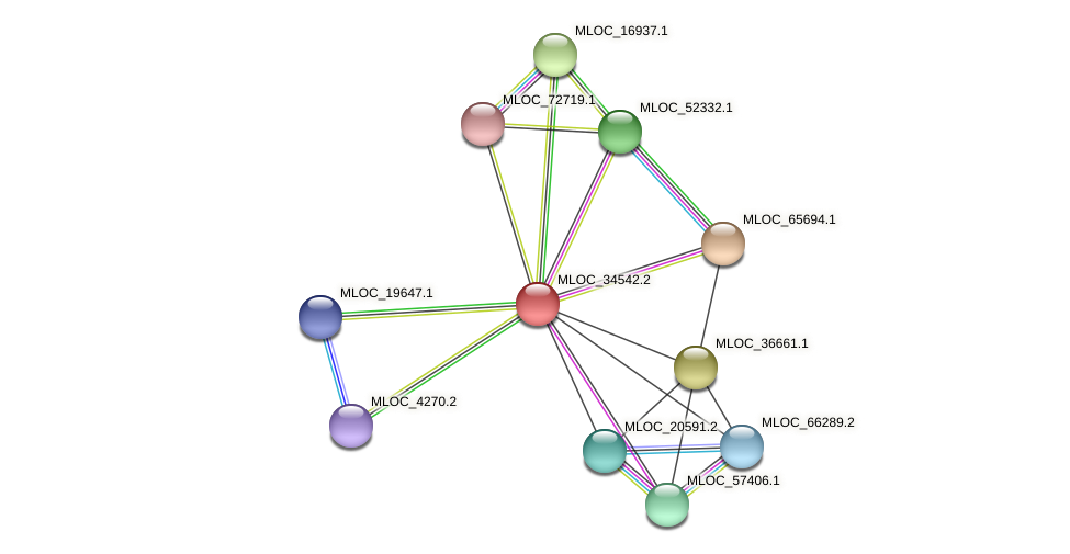 MLOC_34542.2 protein (Hordeum vulgare) - STRING interaction network