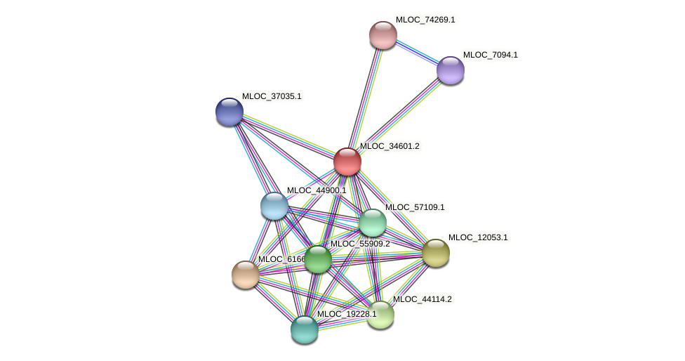 MLOC_34601.1 protein (Hordeum vulgare) - STRING interaction network