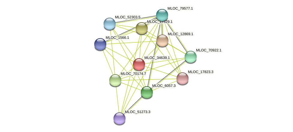 MLOC_34639.1 protein (Hordeum vulgare) - STRING interaction network