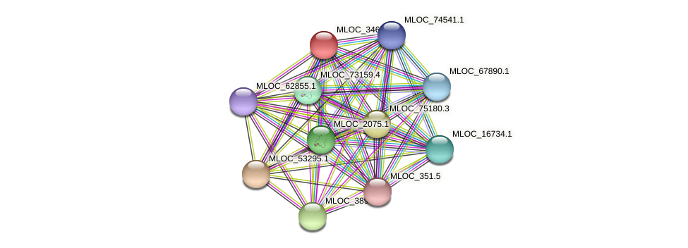 MLOC_34640.1 protein (Hordeum vulgare) - STRING interaction network