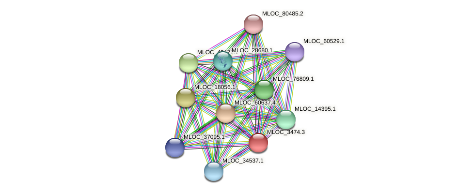 MLOC_3474.3 protein (Hordeum vulgare) - STRING interaction network