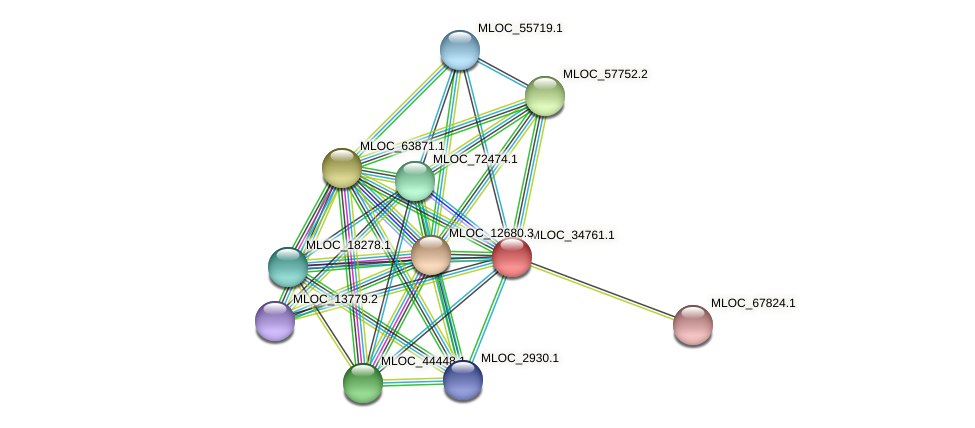 MLOC_34761.1 protein (Hordeum vulgare) - STRING interaction network