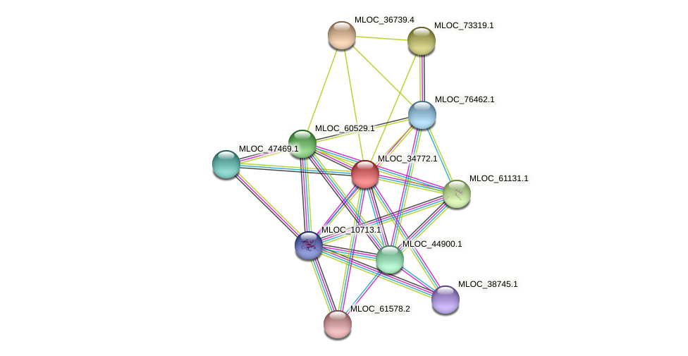 MLOC_34772.1 protein (Hordeum vulgare) - STRING interaction network