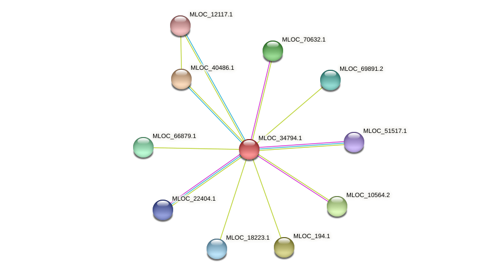 MLOC_34794.1 protein (Hordeum vulgare) - STRING interaction network