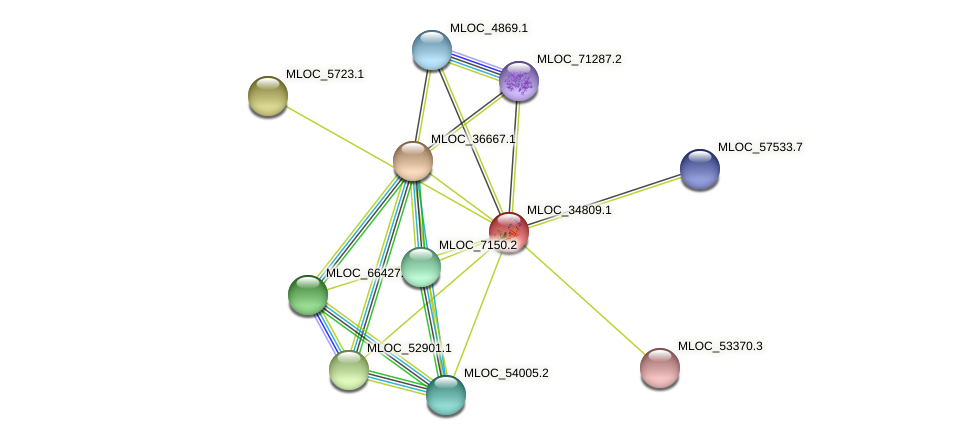 MLOC_34809.1 protein (Hordeum vulgare) - STRING interaction network
