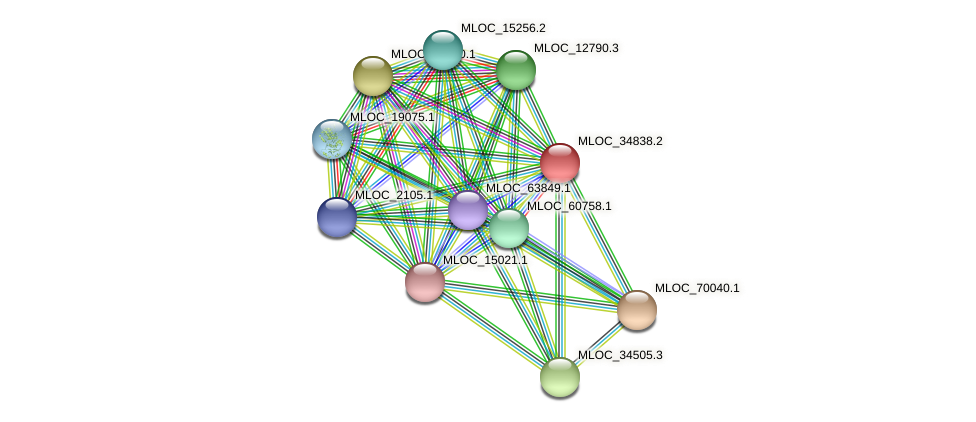 MLOC_34838.2 protein (Hordeum vulgare) - STRING interaction network