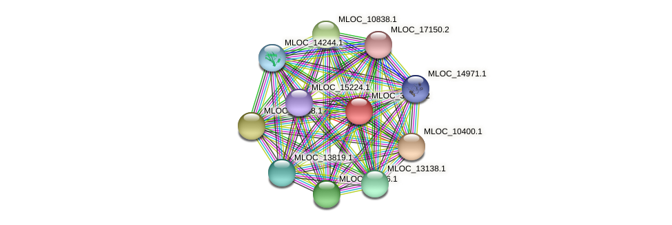 MLOC_34840.2 protein (Hordeum vulgare) - STRING interaction network