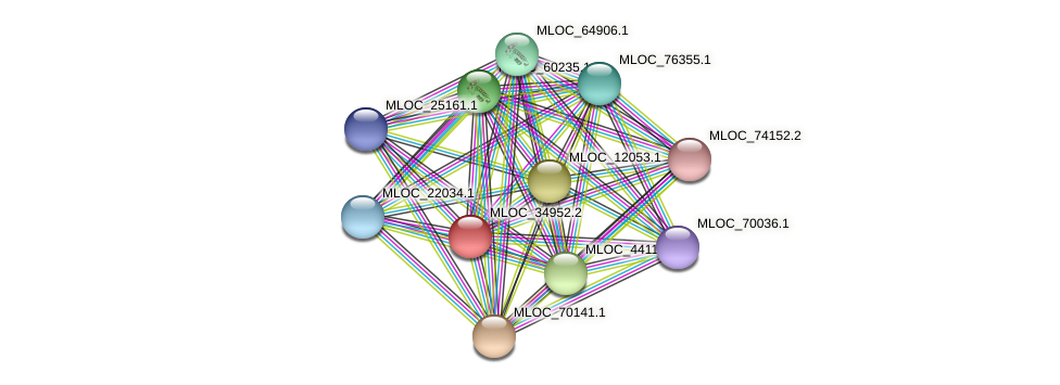 MLOC_34952.2 protein (Hordeum vulgare) - STRING interaction network