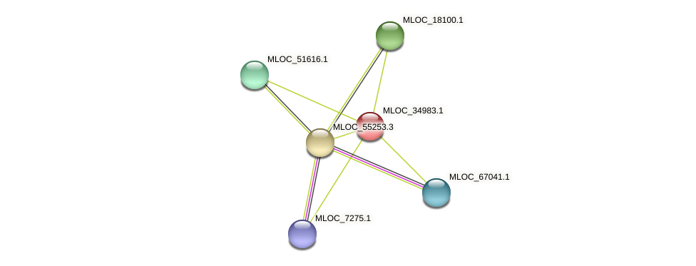 MLOC_34983.1 protein (Hordeum vulgare) - STRING interaction network