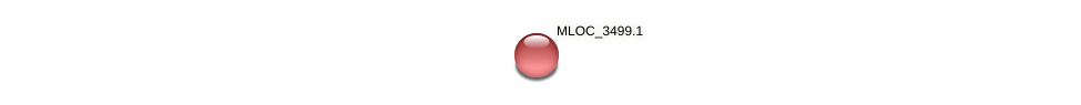 MLOC_3499.1 protein (Hordeum vulgare) - STRING interaction network