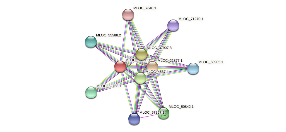 MLOC_35058.1 protein (Hordeum vulgare) - STRING interaction network