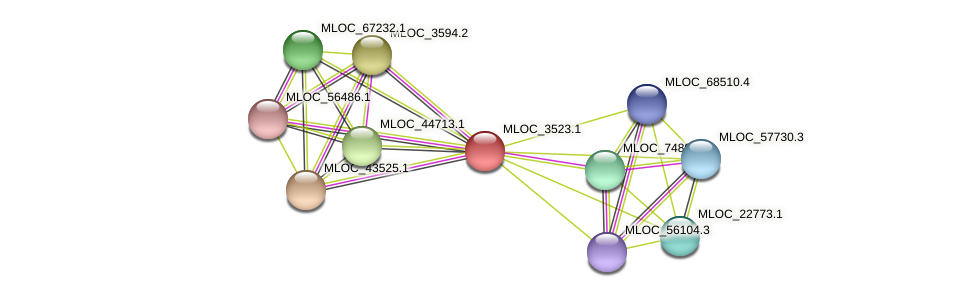 MLOC_3523.1 protein (Hordeum vulgare) - STRING interaction network