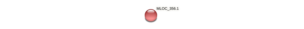 MLOC_356.1 protein (Hordeum vulgare) - STRING interaction network