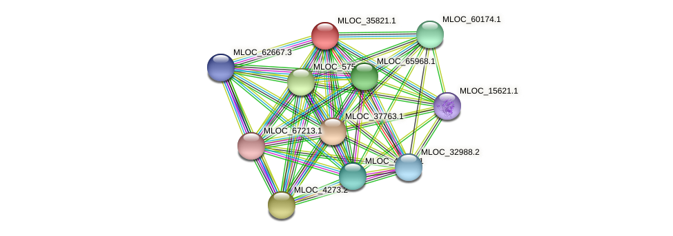 MLOC_35821.1 protein (Hordeum vulgare) - STRING interaction network