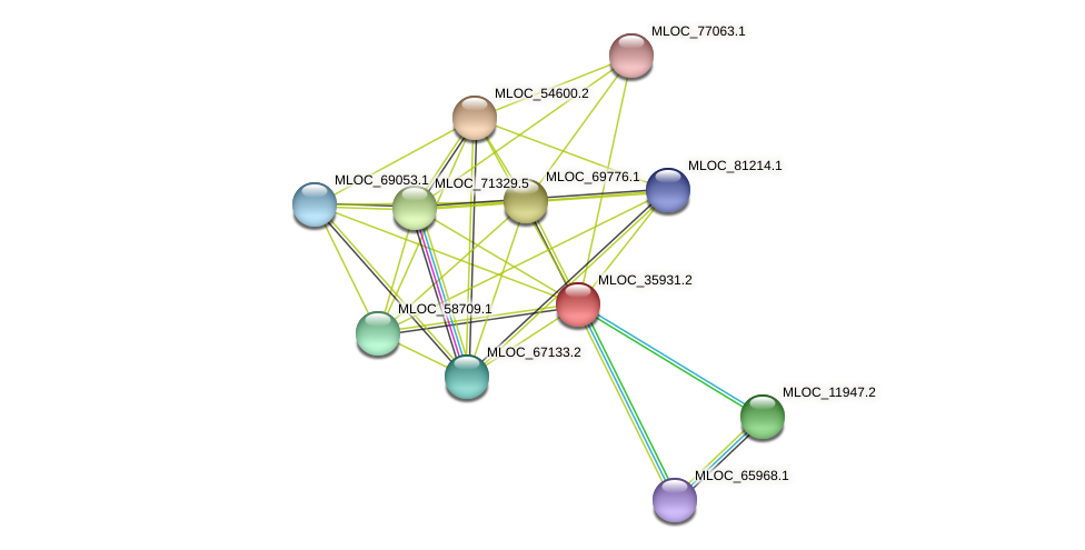 MLOC_35931.2 protein (Hordeum vulgare) - STRING interaction network