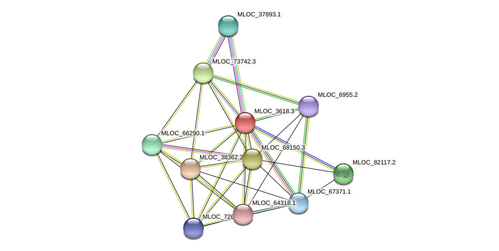 MLOC_3618.3 protein (Hordeum vulgare) - STRING interaction network