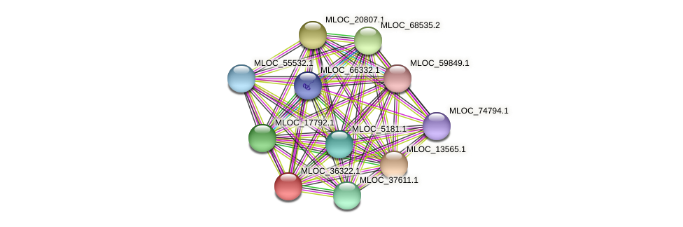 MLOC_36322.1 protein (Hordeum vulgare) - STRING interaction network