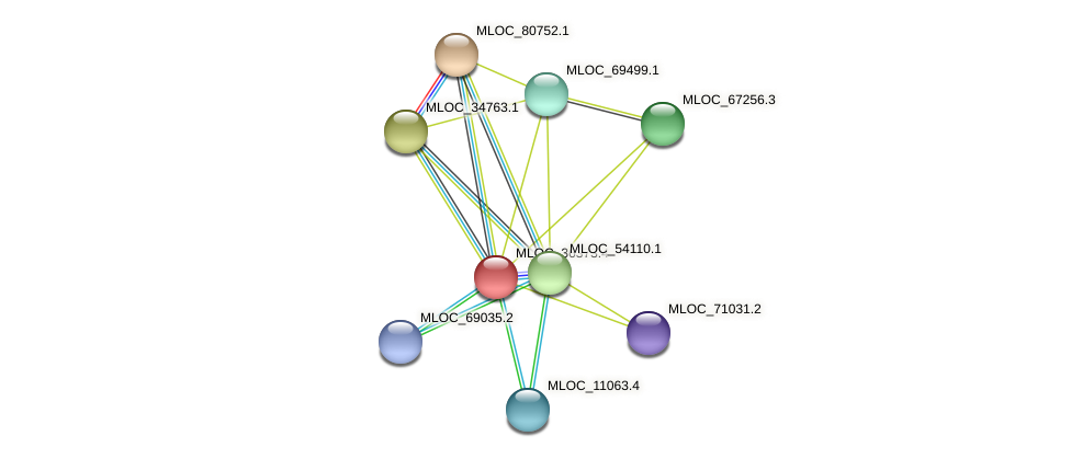 MLOC_36373.4 protein (Hordeum vulgare) - STRING interaction network
