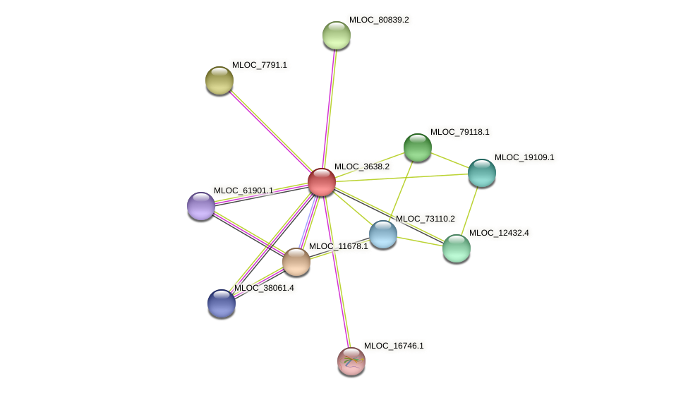 MLOC_3638.2 protein (Hordeum vulgare) - STRING interaction network