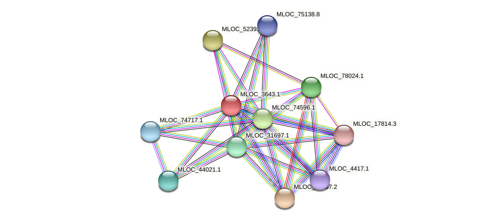 MLOC_3643.1 protein (Hordeum vulgare) - STRING interaction network