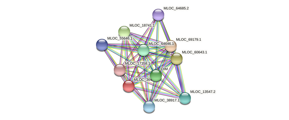 MLOC_36446.1 protein (Hordeum vulgare) - STRING interaction network