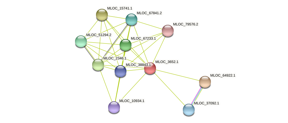 MLOC_3652.1 protein (Hordeum vulgare) - STRING interaction network