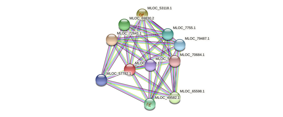 MLOC_36554.1 protein (Hordeum vulgare) - STRING interaction network